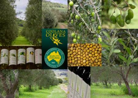 Coolana Olives Products that taste WOW!
